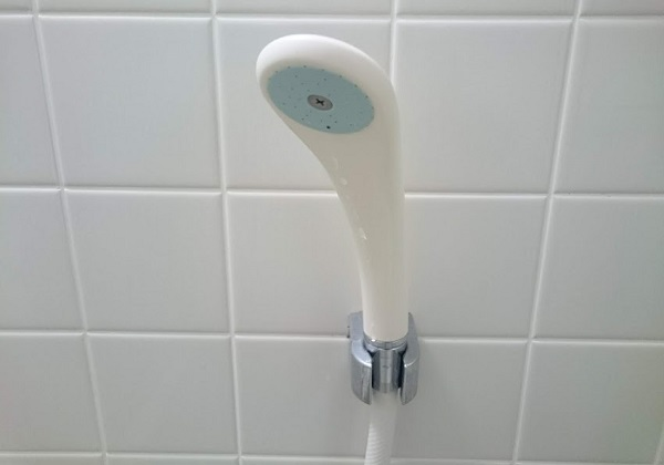 取り換え前のシャワーヘッド
